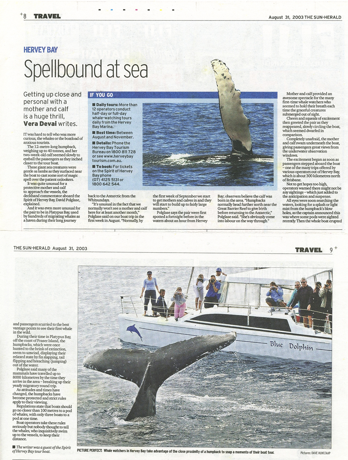 TRAVEL Newspaper Article